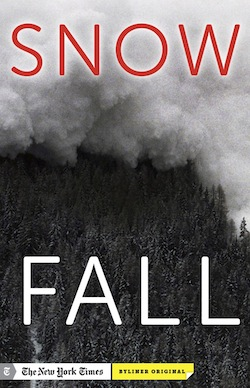 Snow fall cover